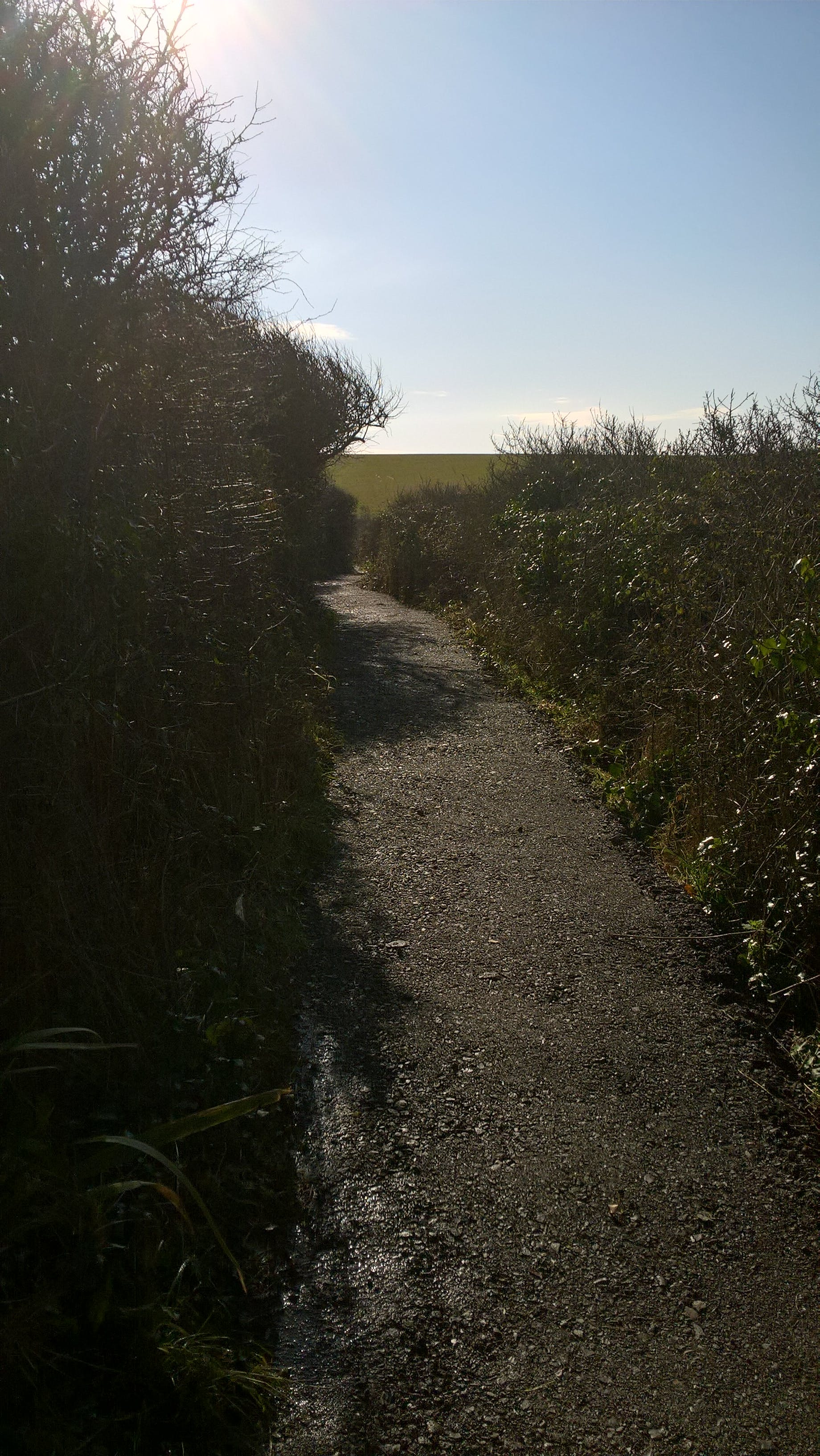 Dorset coast path - after works2