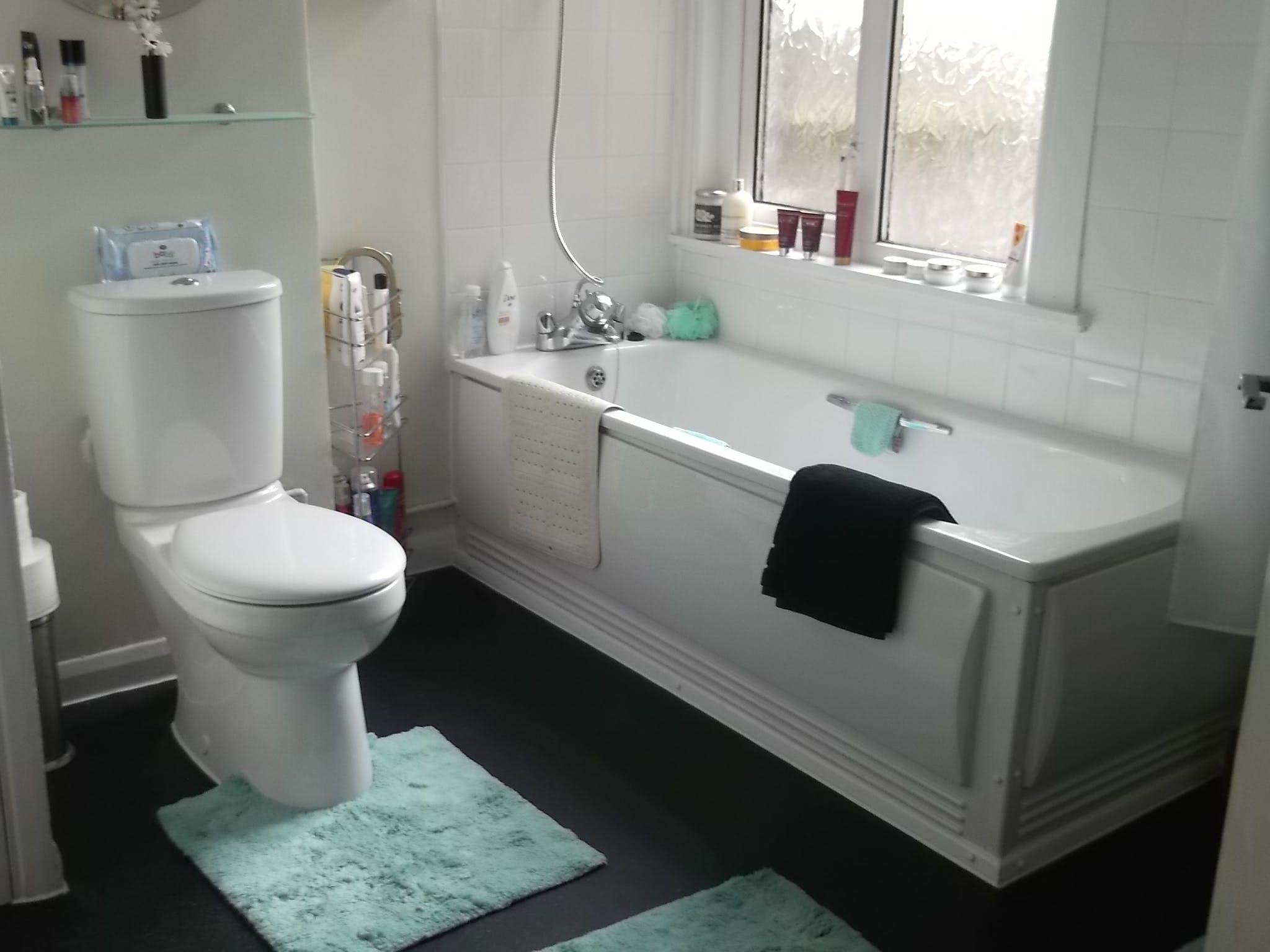 Bathroom_(1)