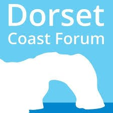 Dorset Coast Have Your Say