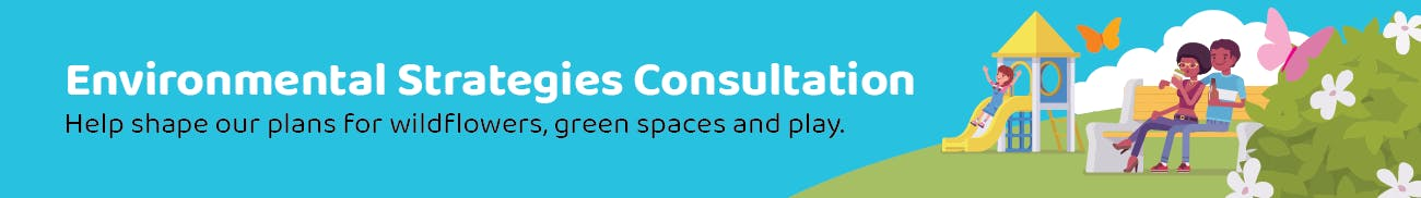 Environmental Strategies Consultation - Help shape our plans for wildflowers, green spaces and play