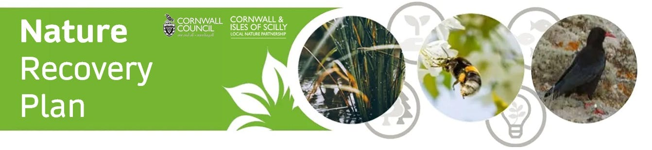 Nature Recovery Plan banner