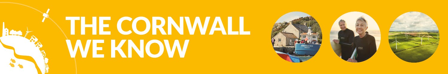Cornwall Council's Policy and Intelligence Newsletter