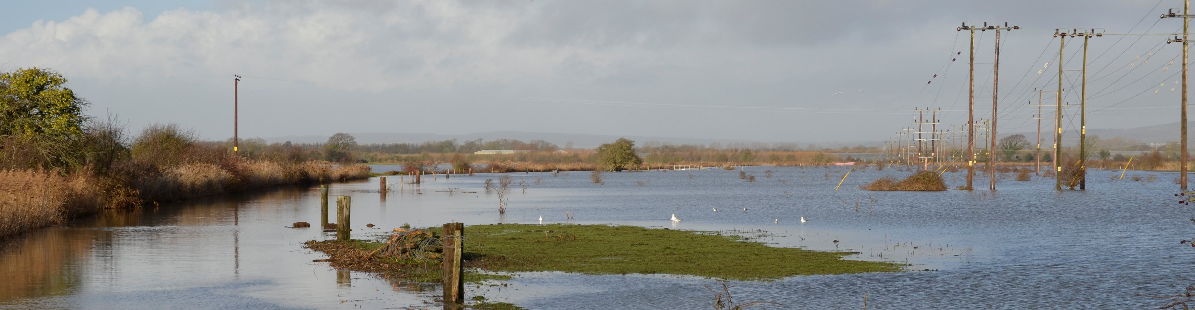 Image of flooding fields in Northern Bognor