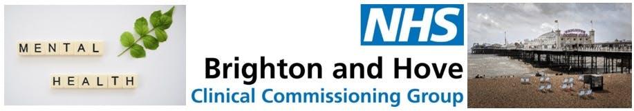 NHS Brighton & Hove CCG and Brighton & Hove City Council Banner