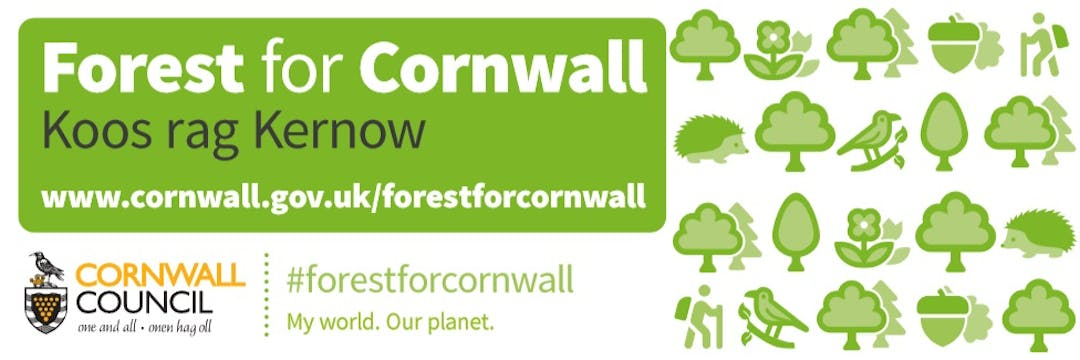 The Forest for Cornwall is an ambitious tree planting project with the principle aim of fighting climate change. The Forest for Cornwall is not a single area of new forest but it includes trees in woods, parks, farmland, commercial forestry, orchards, street trees and those in the public realm of our towns and villages, including public parks and gardens.