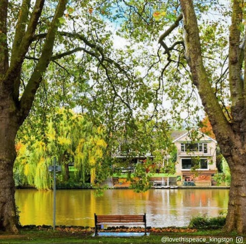 Canbury Gardens #KingstonNature
