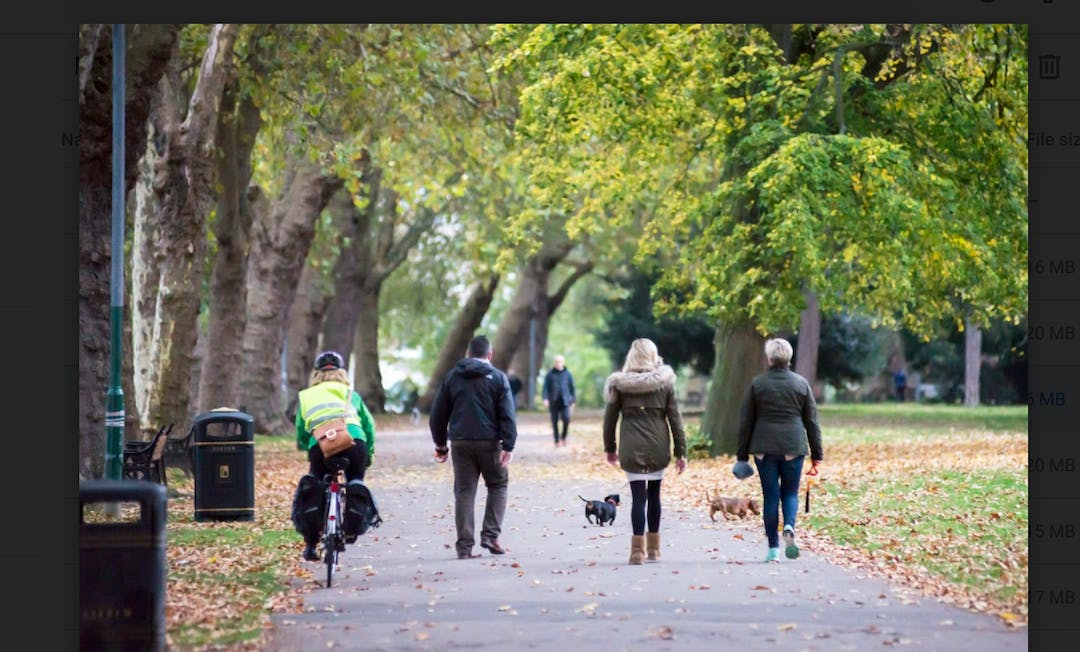 People walking in Canbury Gardens